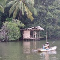 Madu River Boat Safari ($20/pax)