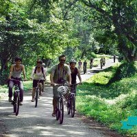 Full Day Tam Coc, Cuc Phuong National Park Tour