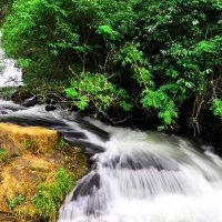 Dalat Waterfall one day Tour